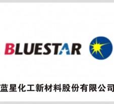 蓝星化工新材料股份有限公司
